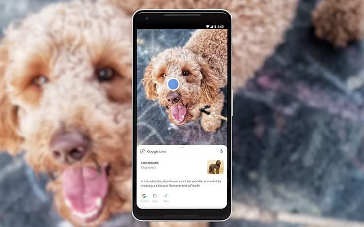 Google Lens já está disponível em português e com novos recursos