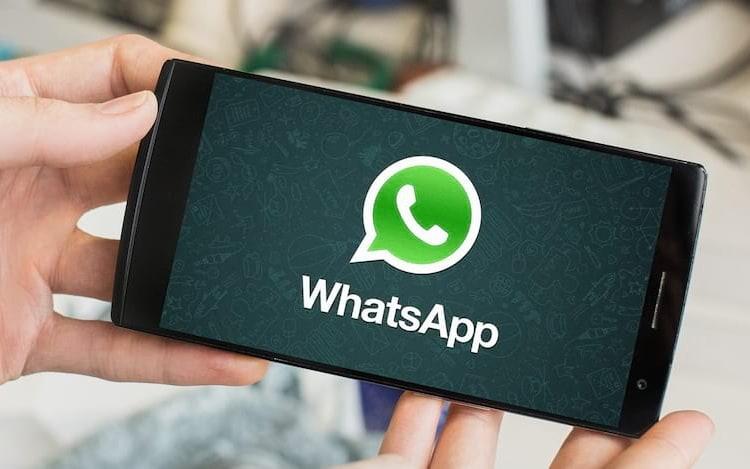 Bug no WhatsApp é capaz de mostrar visto por último até de quem desativou função. Empresa está ciente do problema.