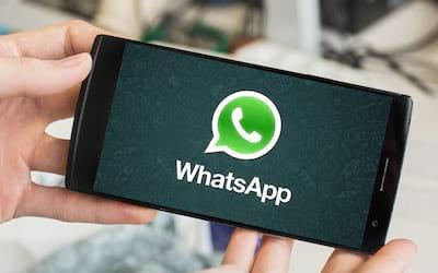 Bug no WhatsApp é capaz de mostrar visto por último até de quem desativou função