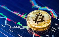 Bitcoin registra a maior queda do ano