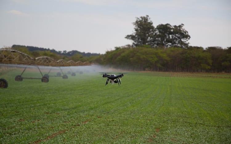 Os veículos não tripulados também colaboram no método de controle biológico de pestes, já que todo o mapeamento acontece em um menor espaço de tempo.