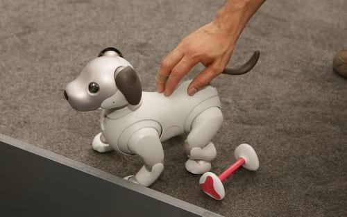 Sony lança cachorro-robô nos EUA por valor salgado
