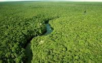 Drones colaboram na detecção e mapeamento da vida indígena na Amazônia