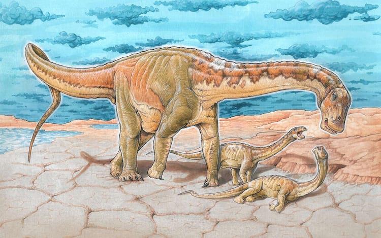 Novas espécies de dinossauro são descobertas em Neuquén, na Patagônia.