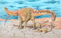 Novas espécies de dinossauro são descobertas em Neuquén, na Patagônia