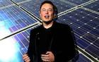 As outras empresas de Elon Musk - SolarCity e OpenAI