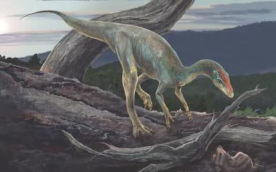Dinossauro que viveu há 233 milhões de anos é encontrado no Brasil