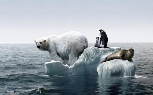 O que acontecerá com a Terra após o aquecimento global?