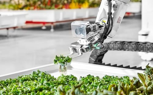 Startup voltada para robôs especializados em agricultura começa a vender seus produtos na Califórnia