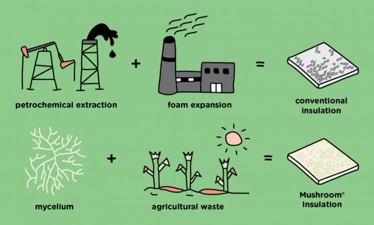 Enquanto o isopor convencional é feito a partir do petróleo, a Embalagem de Cogumelo é feita de fungos