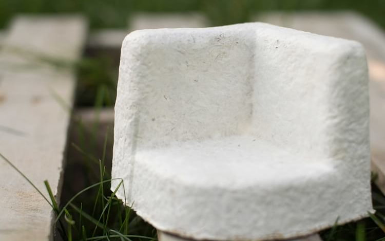 Ikea está adotando embalagens de isopor feitas de fungos