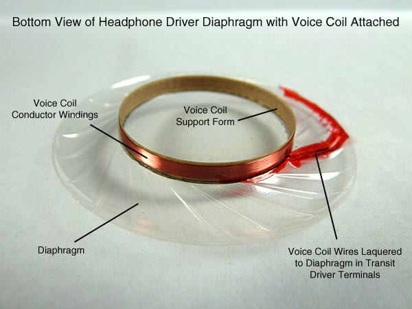 Diafragma e bobina (voice coil)