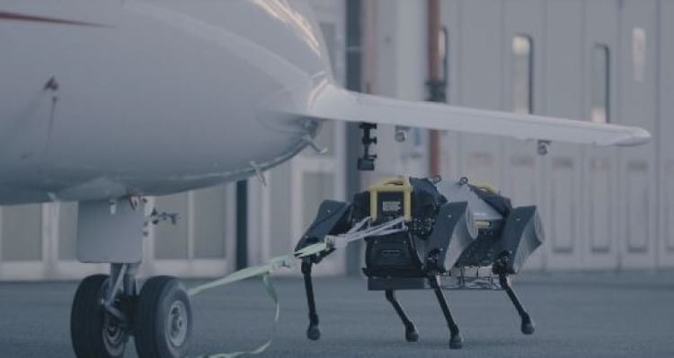 Robô criado pelo Intituto Italiano de Tecnologia