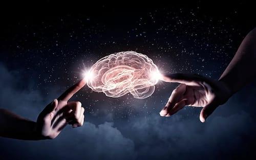 De acordo com a ciência, quem é mais inteligente: O homem ou a mulher?