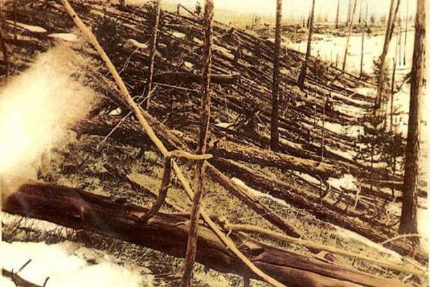 Foto histórica dos danos em Tunguska (1929)