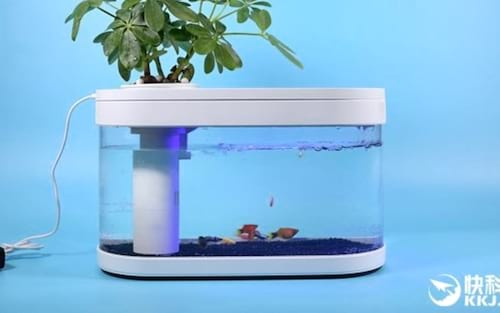 Xiaomi Fish Tank, mais um produto inusitado da empresa chinesa