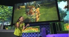 Microsoft Kinect: Lançamento em novembro