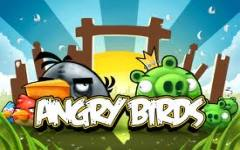 Angry Birds na Campus Party Brasil 2012