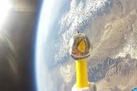 Nasa lança frango de plástico no espaço
