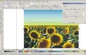 Editando imagens no CorelDraw