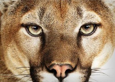 Versão final do Mountain Lion já está disponível para desenvolvedores
