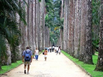 Agora, Google Street View conta com imagens do Jardim Botânico e Lagoa Rodrigo de Freitas