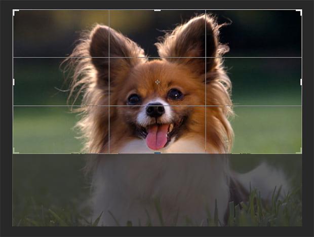 Como cortar uma foto no Photoshop