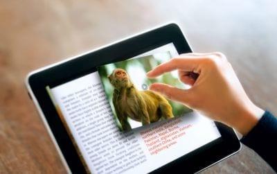 2013: o ano do livro digital no Brasil