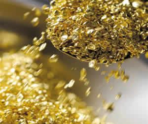 Bactéria é capaz de produzir ouro em poucos segundos