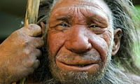 Neandertais desapareceram antes do que se imaginava